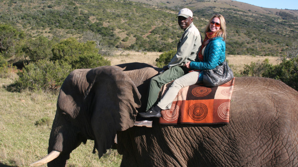 tours and activities South Africa