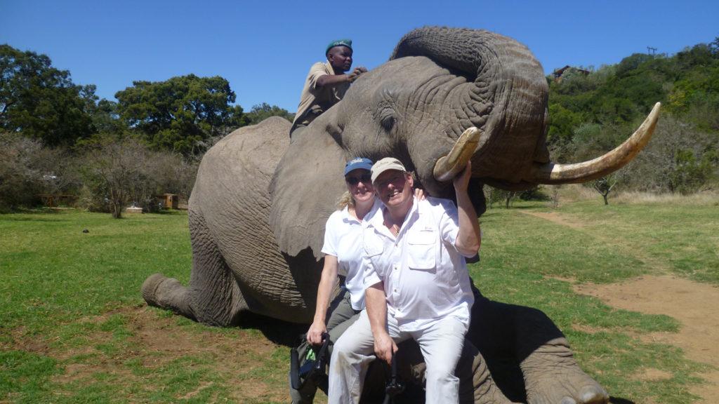 elephant back riding africa