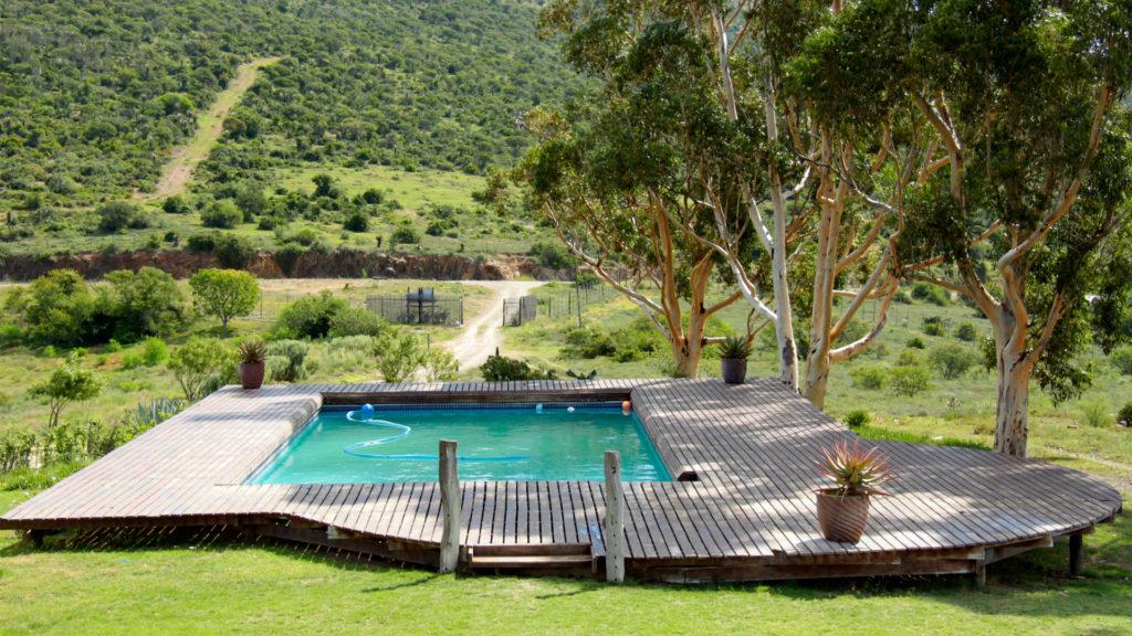 hunting accommodation swimming pool