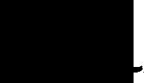 Safari Trails International Logo