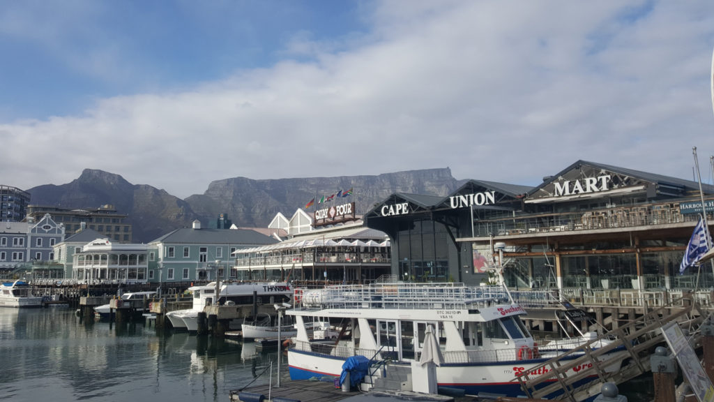visit Cape Town waterfront on safari